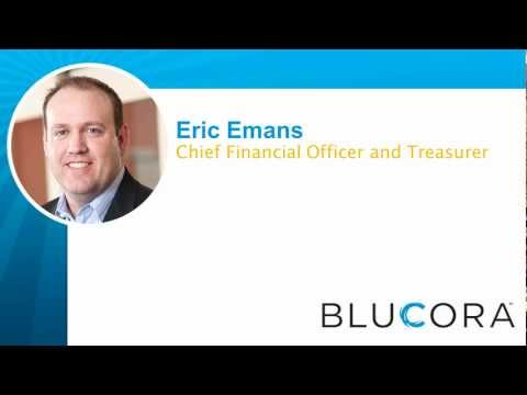 Q4 and FY 2012 Blucora Earnings Call