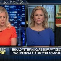 Should veterans' health care be privatized?